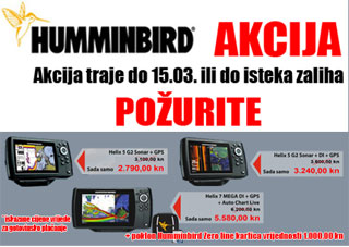Humminbird_z3