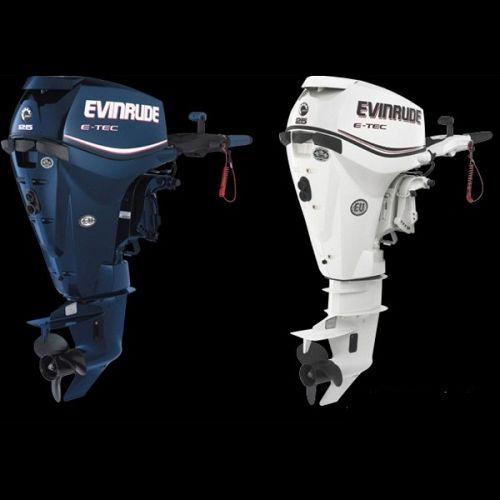 EVINRUDE E25 DPSL/DPGL