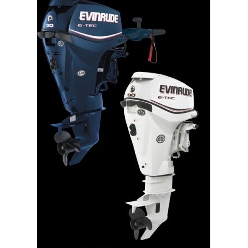 EVINRUDE E30 DPSL/DPGL