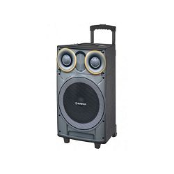 MANTA prijenosni zvučnik-karaoke set SPK5003L, BT, FM, pojač, bež. mikrf, gitara, daljinski, bater